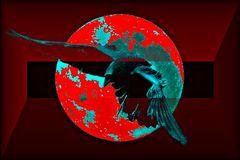Immagine profilo di corvo710